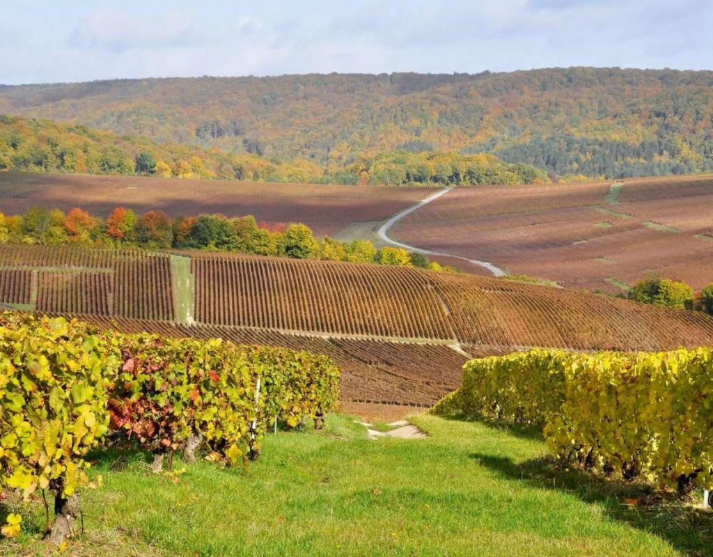 61 Korting Kasteelhotel In De Champagnestreek Melay Incl Ontbijt