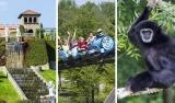 €4 korting op Dagje All-in Familiepark Mondo Verde voor €18,50 p.p. bij Groupon