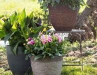 30% Korting op plantenbakken en bloempotten met de Woensdagdeal bij Bol.com