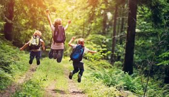 50% Korting Roompot weekend of midweek in het bos voor €119 p. verblijf bij Actievandedag