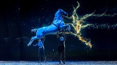 39% Korting 3e-rang Ticket Paardenshow CAVALLUNA bij Groupon