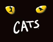 50% Korting CATS in Amsterdam RAI Theater voor €34.95 bij Actievandedag