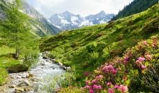 52% Korting 6 dagen volpension Zillertal Oostenrijk voor vanaf €199 p.p. bij Actievandedag