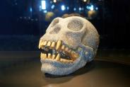 50% Korting Entreeticket Diamant Museum Amsterdam voor €4,99 bij Tripper