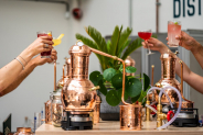 43% Korting Deluxe Distilleer Workshop @ Spirited Union Distillery Amsterdam voor €44,99 p.p. bij Groupon