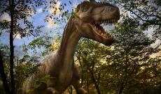 36% Korting Dagje Dinopark Landgoed Tenaxx met eten en drinken voor €7,95 bij Actievandedag