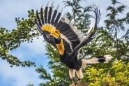 34% Korting Entreeticket Vogelpark Avifauna Alphen aan den Rijn voor €11,95 bij Tripper